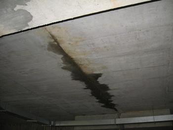 Плесень или грибок в углу комнаты